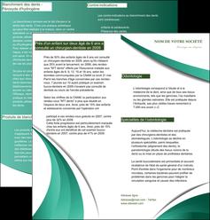 personnaliser modele de depliant 2 volets  4 pages  infirmier infirmiere medecin medecine sante MID30368
