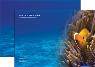 personnaliser maquette affiche paysage belle photo nemo poisson MLGI33450