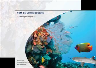 cree flyers chasse et peche plongeur corail poissons MIS33876