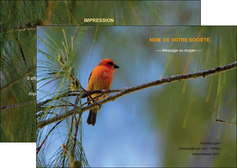 faire flyers paysage nature parc naturel animaux parc naturel des oiseaux MLGI34264