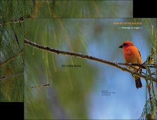 modele pochette a rabat paysage nature parc naturel animaux parc naturel des oiseaux MLGI34278