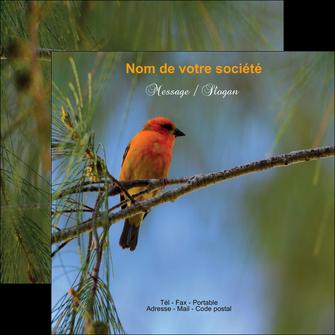 creation graphique en ligne flyers paysage nature parc naturel animaux parc naturel des oiseaux MLGI34286