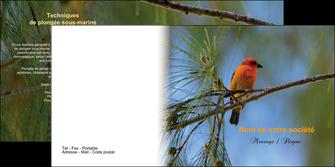 personnaliser maquette depliant 2 volets  4 pages  paysage nature parc naturel animaux parc naturel des oiseaux MLGI34288