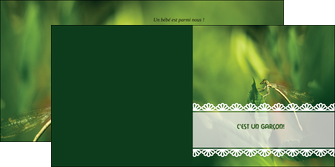 modele en ligne depliant 2 volets  4 pages  faire part de naissance carte pour naissance feuilles MLIG34462