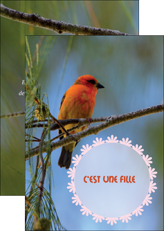 imprimerie flyers faire part de naissance carte de naissance modele de carte de naissance MLIG34514