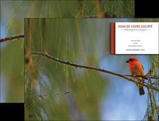 imprimerie pochette a rabat parc oiseaux colore MLGI36298