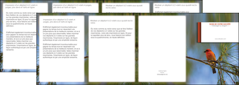 cree depliant 4 volets  8 pages  parc oiseaux colore MLGI36308