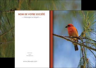 personnaliser modele de flyers parc oiseaux colore MLGI36320