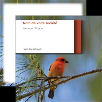 imprimer flyers parc oiseaux colore MLGI36326