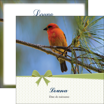 exemple flyers oiseau nature arbre MIF36350