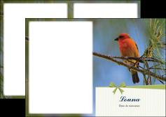 faire depliant 2 volets  4 pages  oiseau nature arbre MIF36352