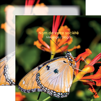faire flyers belle photo de papillon macro couleur MLGI36978