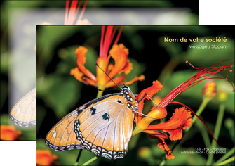 faire modele a imprimer flyers belle photo de papillon macro couleur MLGI36986