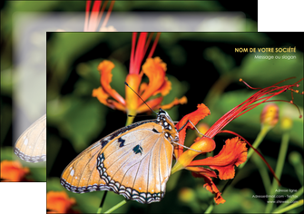 creation graphique en ligne affiche belle photo de papillon macro couleur MLGI36990