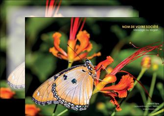 faire modele a imprimer flyers belle photo de papillon macro couleur MLGI36996