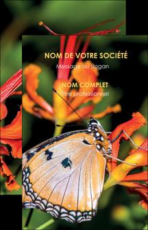 creer modele en ligne carte de visite belle photo de papillon macro couleur MLGI37006