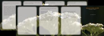 exemple depliant 4 volets  8 pages  fleuriste et jardinage plantes cactus fleurs MLGI37656