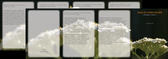 imprimerie depliant 4 volets  8 pages  fleuriste et jardinage plantes cactus fleurs MLGI37676