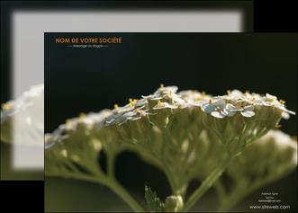 personnaliser modele de affiche fleuriste et jardinage plantes cactus fleurs MLGI37678