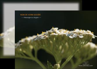 personnaliser modele de flyers fleuriste et jardinage plantes cactus fleurs MLGI37682