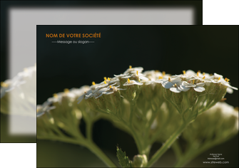 imprimer flyers fleuriste et jardinage plantes cactus fleurs MLGI37690