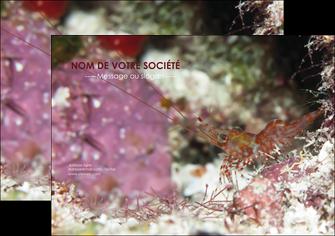 modele en ligne affiche poisson et crustace crevette crustace animal MIS38994