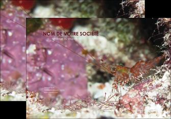 personnaliser maquette affiche poisson et crustace crevette crustace animal MIS39008