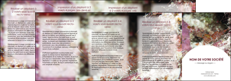 creation graphique en ligne depliant 4 volets  8 pages  poisson et crustace crevette crustace animal MIF39014