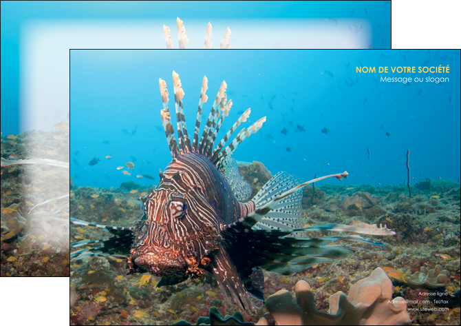 creation graphique en ligne affiche animal poissons animal bleu MLGI39582