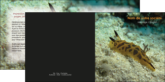 impression depliant 2 volets  4 pages  animal crevette crustace animal MIF40126