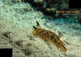 faire flyers animal crevette crustace animal MIF40134
