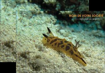 creation graphique en ligne affiche animal crevette crustace animal MIF40142