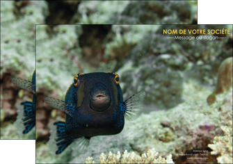 creer modele en ligne affiche animal poisson sous marine nature MIF40236